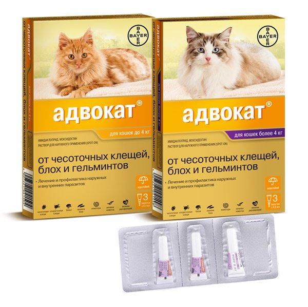 Адвокат капли от глистов для кошек
