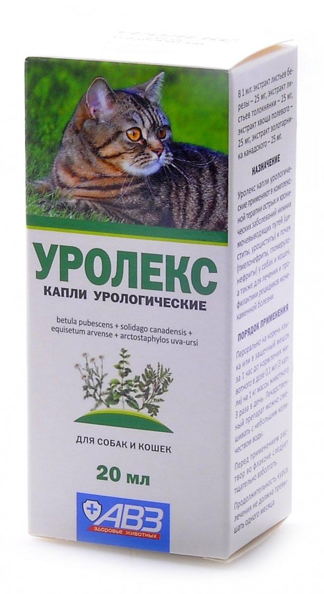 Уролекс для кошек - 80 фото лучших каплей для лечения и профилактики